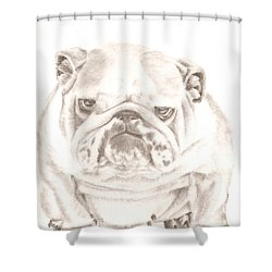 British Bulldog Winnie Shower Curtain