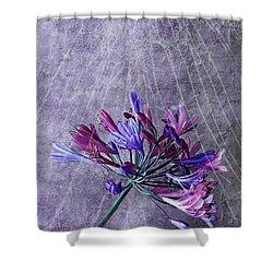 Broken Dreams Shower Curtain by Claudia Moeckel