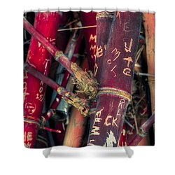 Broken Promises Shower Curtain