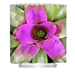 Shower Curtain featuring the photograph Bromeliad by Allen Beatty