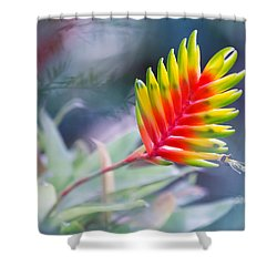 Bromeliad Beauty Shower Curtain