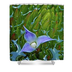 Bromeliad Pond Shower Curtain