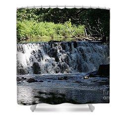 Bronx River Waterfall Shower Curtain by John Telfer