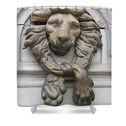 Shower Curtain featuring the photograph Bronze Lion by Pema Hou