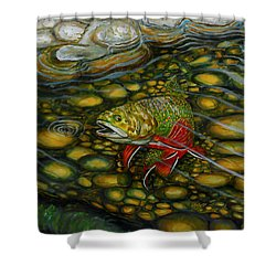 Brook Trout Shower Curtain by Steve Ozment