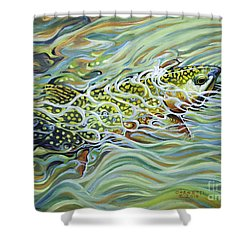 Brookie Flash Shower Curtain