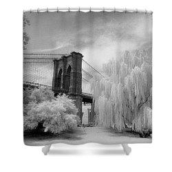 Brooklyn Bridge Willows Shower Curtain