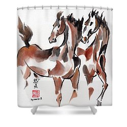 Brothers Shower Curtain by Bill Searle