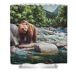 Brown Bear On The Little Susitna River Shower Curtain