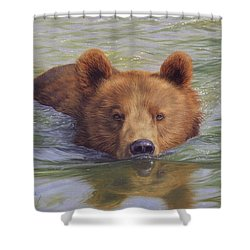 Brown Bear Painting Shower Curtain by David Stribbling