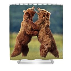 Brown Bears Sparring Shower Curtain by Frans Lanting MINT Images