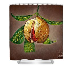 Brown Glow Nutmeg Shower Curtain by Laura Forde