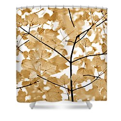 Brown Leaves Melody Shower Curtain by Jennie Marie Schell