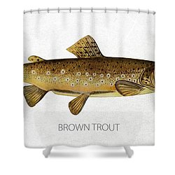 Brown Trout Shower Curtain by Aged Pixel