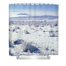 Brrrr 1021 Shower Curtain by Brent L Ander