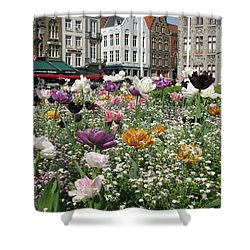 Shower Curtain featuring the photograph Brugge In Spring by Ausra Huntington nee Paulauskaite
