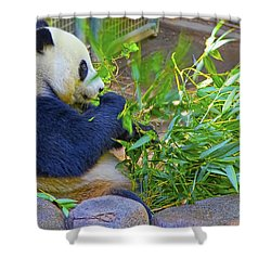 Shower Curtain featuring the photograph Brunch On The Patio by Gary Holmes