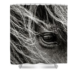 Brunn Stjarna Shower Curtain