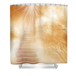 Brush Of Angels Wings Shower Curtain