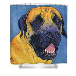Brutus #2 Shower Curtain