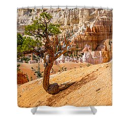 Bryce Canyon Np Shower Curtain