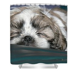 Shower Curtain featuring the photograph Bubba by EricaMaxine  Price