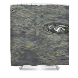 Shower Curtain featuring the photograph Bubble Bubble by Nadalyn Larsen