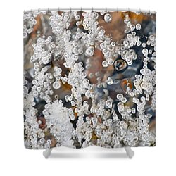 Bubble Up  Shower Curtain