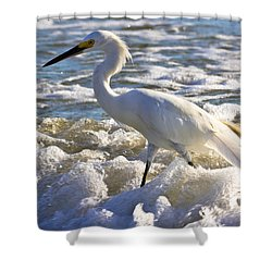 Bubbles Around Snowy Egret Shower Curtain