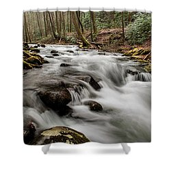 Bubbling Mountain Stream Shower Curtain by Debbie Green