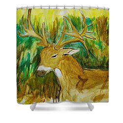 Buck Of A Lifetime Shower Curtain
