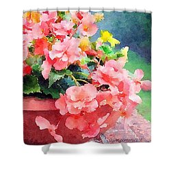 Bucket O Begonias Shower Curtain