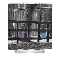 Buckets Shower Curtain