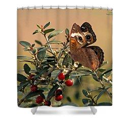 Buckeye Beauty Shower Curtain