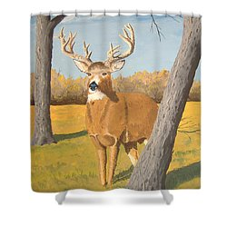 Bucky The Deer Shower Curtain by Norm Starks