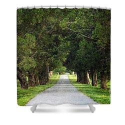 Bucolic - D008564 Shower Curtain by Daniel Dempster
