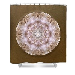 Buddha Blessing Shower Curtain