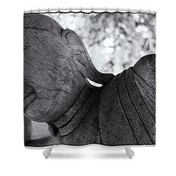 Buddha Face Shower Curtain by Setsiri Silapasuwanchai