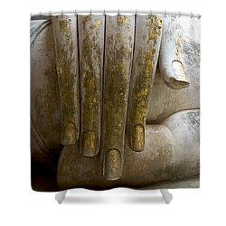 Buddha Hand Shower Curtain by Zina Zinchik