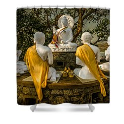 Buddha Lessons Shower Curtain by Adrian Evans