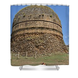 Buddhist Religious Stupa Horse And Mules Swat Valley Pakistan Shower Curtain by Imran Ahmed