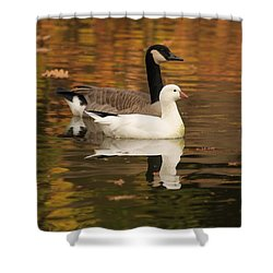 Shower Curtain featuring the photograph Buddies by Amy Gallagher