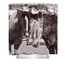 Buddies In Snow Shower Curtain by Denise Romano