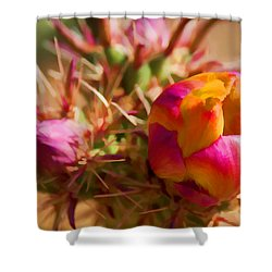 Budding Cactus Shower Curtain by Fred Larson