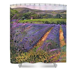 Buddleia And Lavender Field Montclus Shower Curtain by Timothy Easton