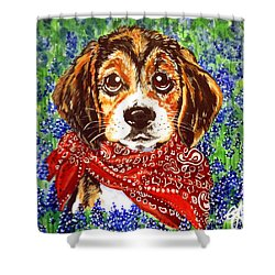 Buddy Shower Curtain by Jackie Carpenter