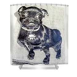 Shower Curtain featuring the drawing Buddy by Jamie Frier