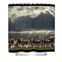 Budweiser Clydesdales Shower Curtain