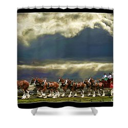 Budweiser Clydesdales Paint 1 Shower Curtain