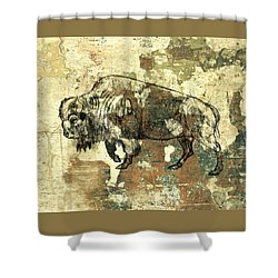 Shower Curtain featuring the photograph Buffalo 7 by Larry Campbell